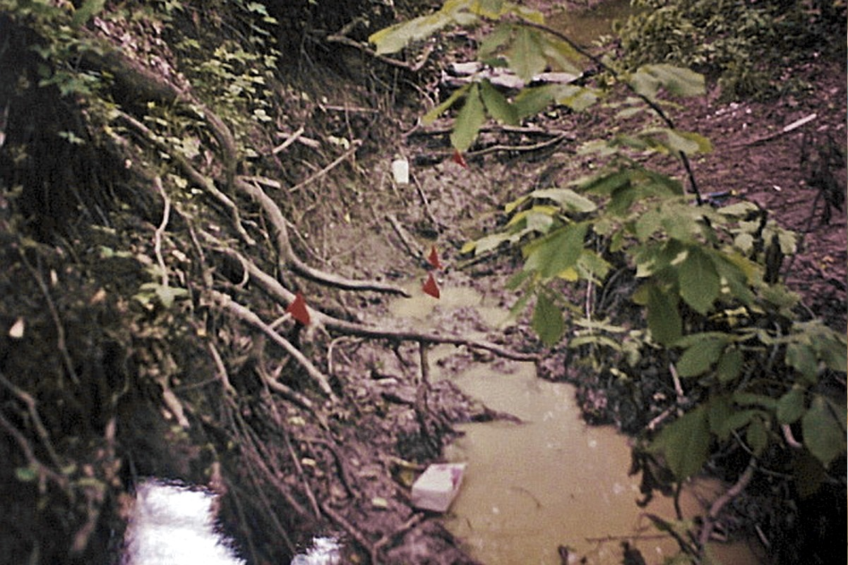 The muddy ditch where two of the boys were found